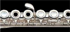 直列式長笛